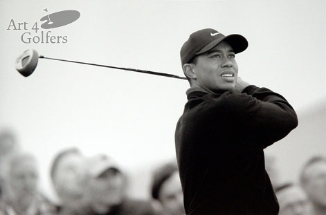 Tiger Woods - B & W Photograph